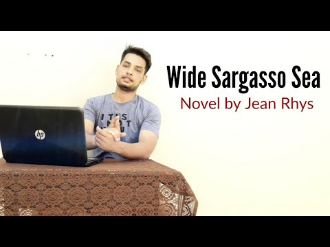 Wide Sargasso Sea : Novel by Jean Rhys in Hindi summary Explanation and full analysis