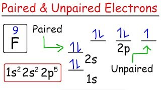 How To Determine The Number of Paired and Unpaired Electrons