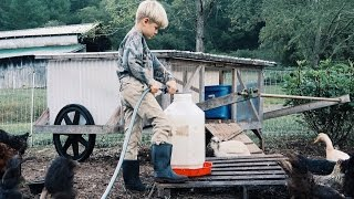 8 Year Old Takes Over The Farm Chores!