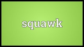 Squawk Meaning