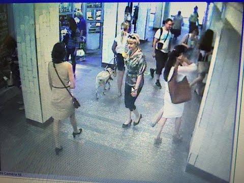 [Оперативное видео] Похитительница собаки-поводыря охотилась за слепой певицей