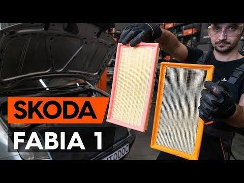 Как заменить воздушный фильтр двигателя на SKODA FABIA 1 (6Y5) [ВИДЕОУРОК AUTODOC]