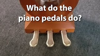 What do the pedals on a piano do? | Cunningham Piano Company