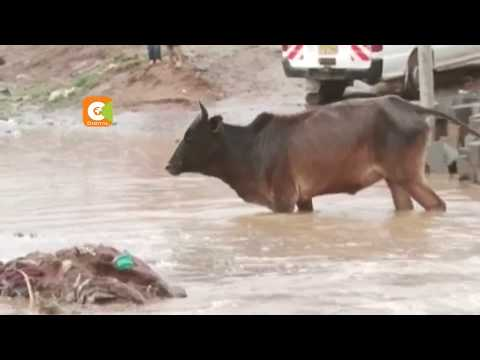 Three die as rains continue to pound most parts of Kenya