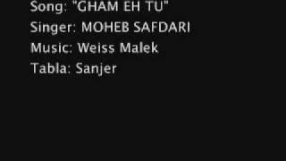 Moheb Safdari Live