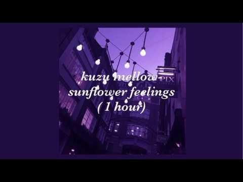 kuzu mellow- sunflower feelings (1 hour edition)