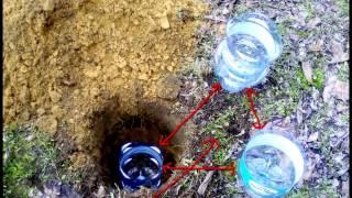 Nawadnianie działki butelki 5 - 6 litra - samoczynnie ...