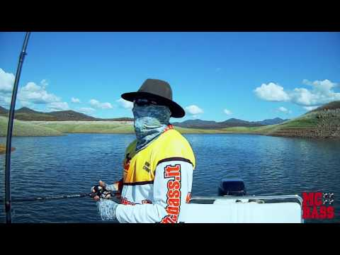 MC Bass Sardinia fishing guide in Mexico