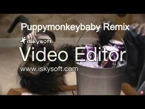 Puppymonkeybaby Remix