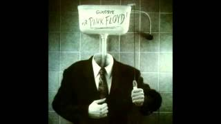 Roger Waters  - Goodbye Mr  Pink Floyd