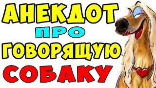 АНЕКДОТ про Мужика и Говорящую Собаку Самые смешные свежие анекдоты