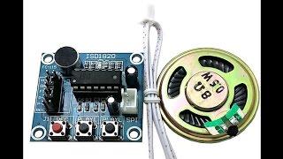 Модуль записи голоса с микрофоном и динамиком на микросхеме Isd1820. Распаковка .подключение.