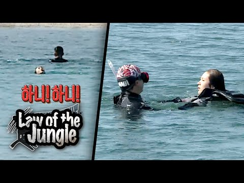 Hani Has Flipped Over, And She's Floating [Law Of The Jungle Ep 403]