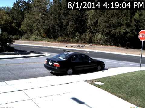 Car Theft In Almaden Valley