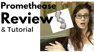 Promethease Review  TutorialTour