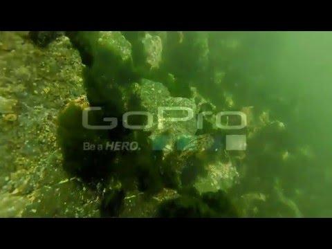 Diving in Chimbote Peru
