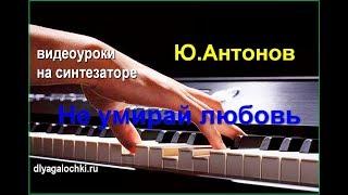 Видеоурок на синтезаторе Антонов Не умирай любовь