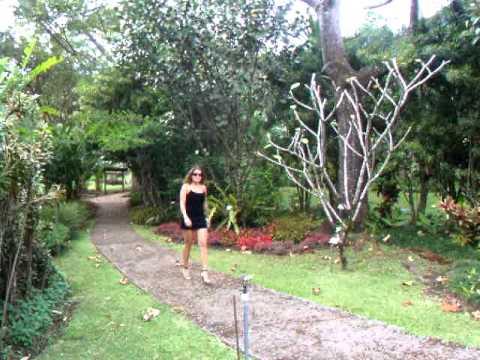 Nuestra belleza del mes enero 2012 franciny en el jard n for Jardines costa rica