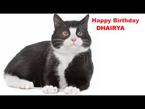 Dhairya  Cats Gatos - Happy Birthday