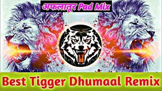 Dj Dhumaal Tiger Dance Sher Dhun Benjo Dj Dhamaal Remix Sandal Dhun Tiger Dance 2021 Sher Dhun