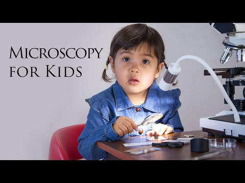 Microscopy For Kids