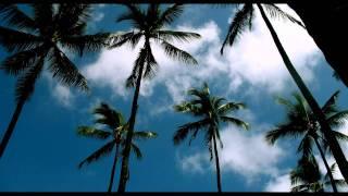 Kaskade - 4 AM (Adam K & Soha remix) *HD*