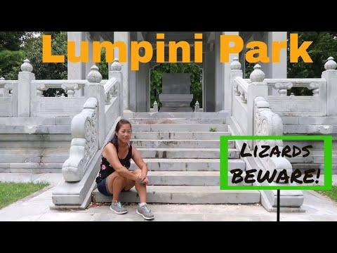 LUMPINI PARK: BANGKOK THAILAND MONITOR LIZARDS!!!!