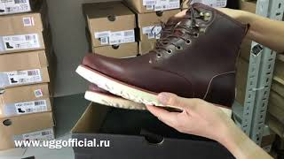 Обзор мужских ботинок UGG Hannen Новинки UGG 2018-2019