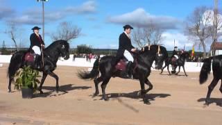 Club Hipic Sa Creueta,San Antoni Horse Show 2014.