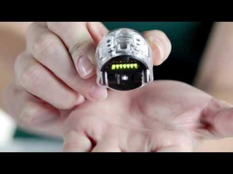 Get to Know Ozobot Evo, the Smart and Social Robot
