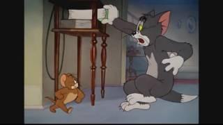 Tom and Jerry show tập 10 ( phim hoạt hình tiếng việt ) youtube