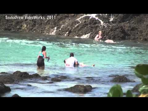 tourists-washed-off-rocks-by-big-wave