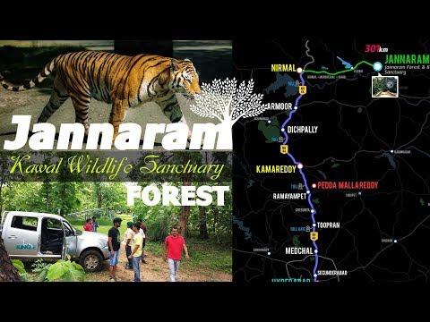 Jannaram Forest | Kawal Tiger Safari Trip @ Jannaram, Adilabad, Telangana, india