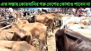 ৭ জুলাই ২০২০ চোখে পানি চলে আসবে || এত সস্তা দরে কোরবানির গরু দেশের কোথাও পাবেন না || cow price 2020