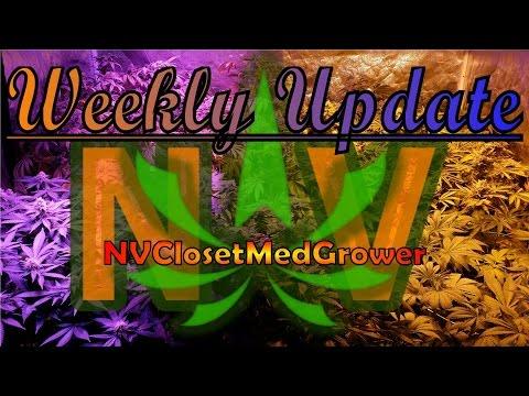 Weekly Update,  4/12/2015