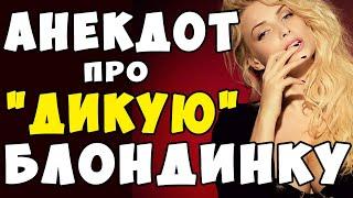 АНЕКДОТ про Блондинку и Дикую Лошадь Самые Смешные Свежие Анекдоты