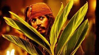 Джек Воробей набирает команду для уплаты долга | Пираты Карибского моря: Сундук мертвеца | 2006