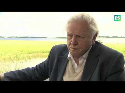 Abberton Opening: Sir David Attenborough