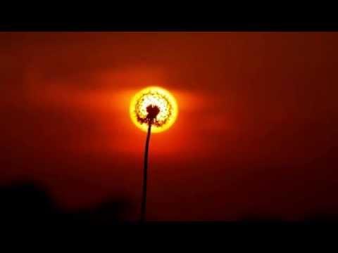Brian Crain - Symphony No. 1: Adagio Con Amore