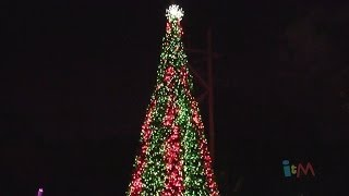 Christmas Time Tree Show with dancing lights at Busch Gardens Tampa 2013