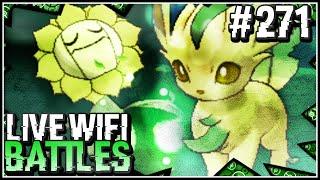 pokemon omega ruby alpha sapphire wifi battle w shadypenguinn come on sunflower
