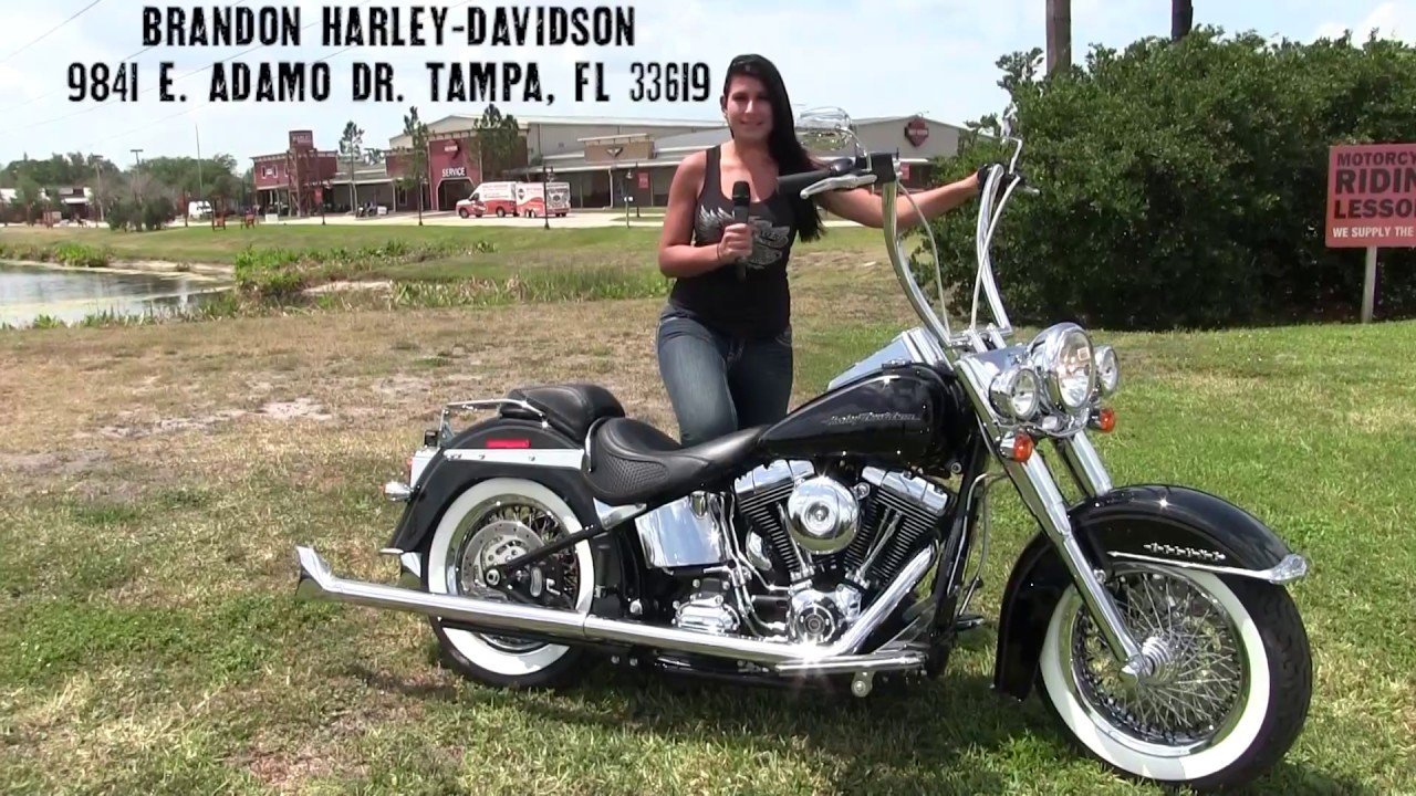 2017~2018 Harley Davidson Softail Deluxe motorcycles for ...