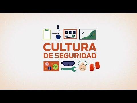 Seguridad Industrial Actitudes hacia la Seguridad 02 (Video de capacitación de personal)из YouTube · Длительность: 4 мин10 с