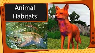 Science - Types of Animal Habitat - English