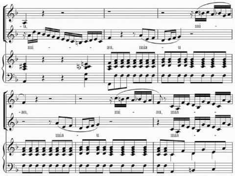 [Les Petits Chanteurs a la Croix de Bois] Rossini: Cat's Duet, LIVE-2008(?)
