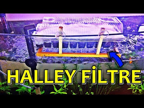 Halley Kutusundan Filtre Yapımı | DIY AQUARİUM FİLTER