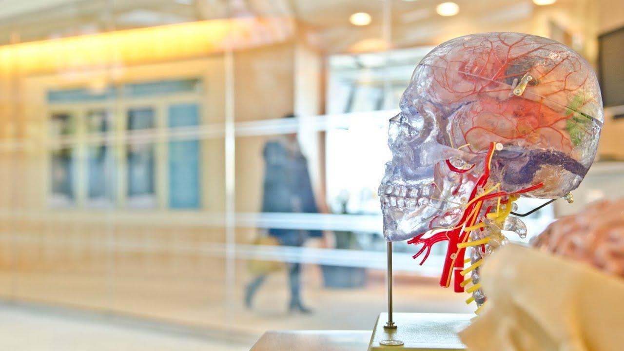 Head Injury Advice | Patient