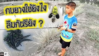 กบยางจิ๋ว หาปลาช่อน ปล่อยกลับธรรมชาติ | เด็กตกปลา