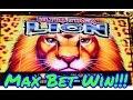 Lucky Lion Fish slot machine, bonus - YouTube