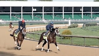 Floyd Mayweather Looks for Itsaknockout to Win the Kentucky Derby